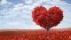 10 сентября, 15:00 - Таинство Любви